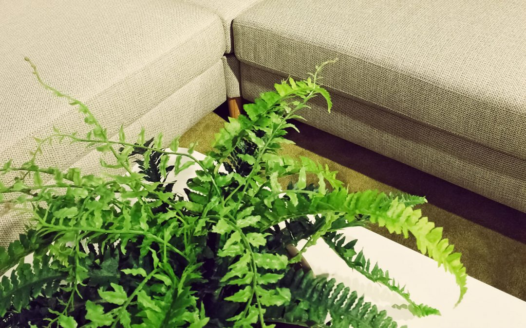 4 Steps to Improve Indoor Air Quality at Home